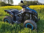 can-am-renegade-1000r